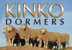 Kinko Dormers is one of the largest Dormer studs in the country.